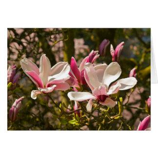Tarjeta de felicitación de la magnolia