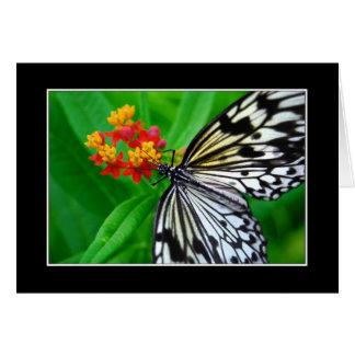 Tarjeta de felicitación de la mariposa del papel d