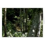 Tarjeta de felicitación de la montaña Creek-B3