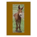 Tarjeta de felicitación de la mula
