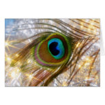 Tarjeta de felicitación de la pluma del pavo real