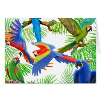 Tarjeta de felicitación de la selva del Macaw