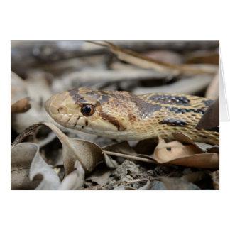 Tarjeta de felicitación de la serpiente de Gopher