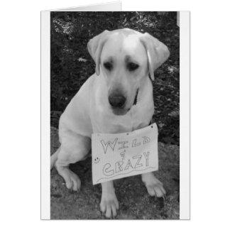 Tarjeta de felicitación de Labrador