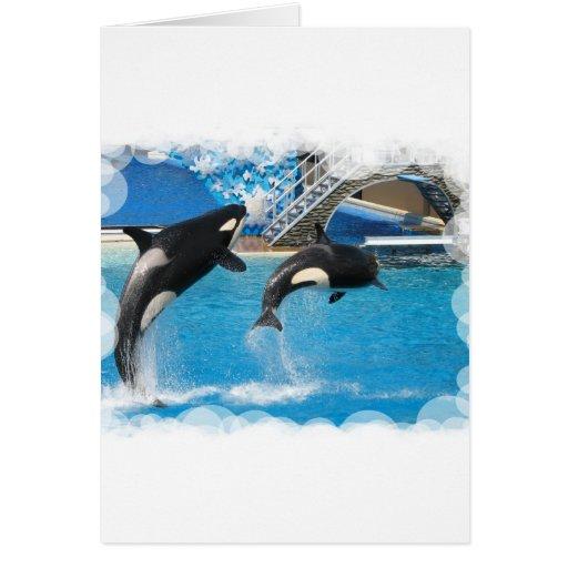 Tarjeta de felicitación de las ballenas de la orca