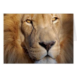 Tarjeta de felicitación de las imágenes del león