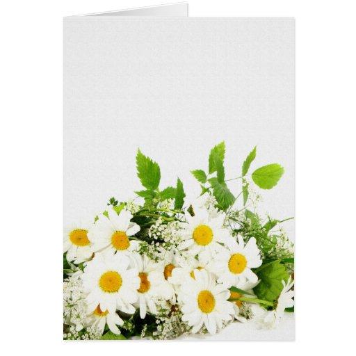 tarjeta de felicitación de las margaritas blancas