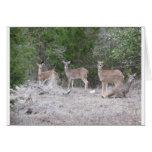 Tarjeta de felicitación de los ciervos