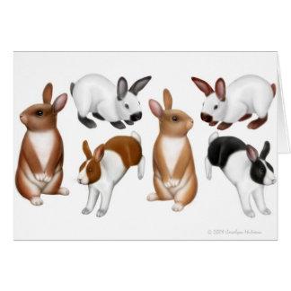 Tarjeta de felicitación de los conejos de Lotsa