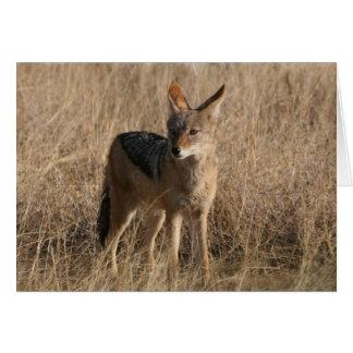 Tarjeta de felicitación de los coyotes del bebé