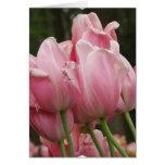 Tarjeta de felicitación de los festivales del tuli