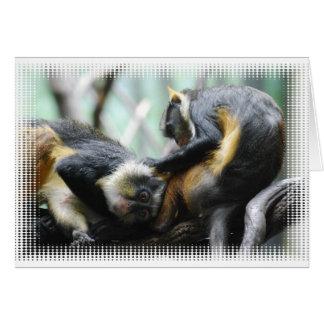 Tarjeta de felicitación de los monos de Guenon