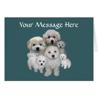 Tarjeta de felicitación de los perritos de Bichon