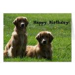 Tarjeta de felicitación de los perros perdigueros