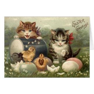 Tarjeta de felicitación de Pascua de los gatitos d