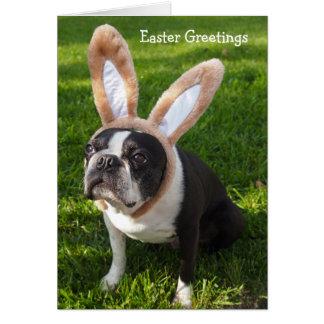 Tarjeta de felicitación de Pascua del conejito de
