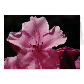 Tarjeta de felicitación de Rhododendren