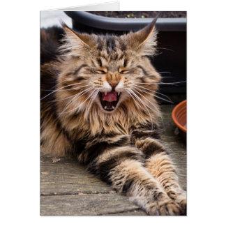 Tarjeta de felicitación de risa del gato