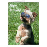 Tarjeta de felicitación de Yorkshire Terrier del f