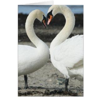 Tarjeta de felicitación del amor del cisne