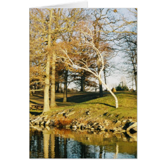 tarjeta de felicitación del árbol que se inclina