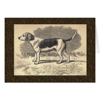 Tarjeta de felicitación del beagle del vintage