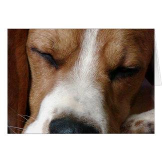 Tarjeta de felicitación del beagle el dormir
