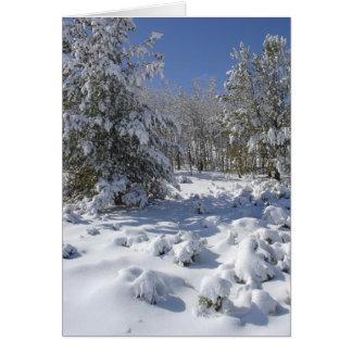 Tarjeta de felicitación del bosque del invierno