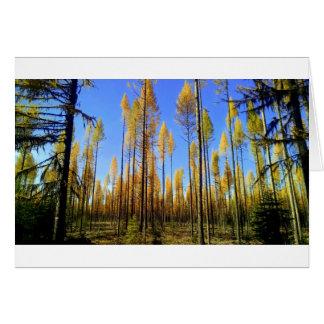 """Tarjeta de felicitación del """"bosque encantado"""""""