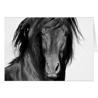 Tarjeta de felicitación del caballo del negro del