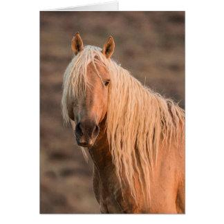 Tarjeta de felicitación del caballo salvaje del re