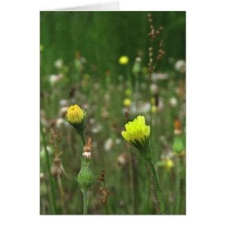 Tarjeta de felicitación del campo del Wildflower d