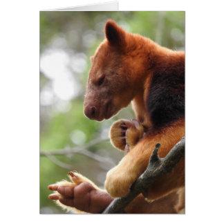 Tarjeta de felicitación del canguro de árbol