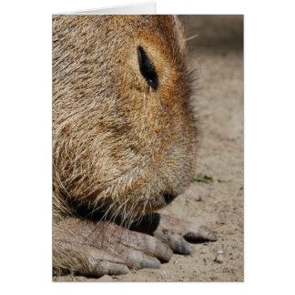 Tarjeta de felicitación del Capybara