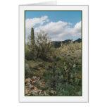Tarjeta de felicitación del colorante del cactus