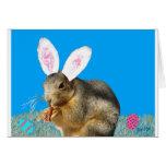 Tarjeta de felicitación del conejo de rabo blanco