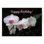Tarjeta de felicitación del cumpleaños de la orquí