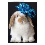 Tarjeta de felicitación del cumpleaños del conejo