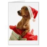 Tarjeta de felicitación del Dachshund del navidad
