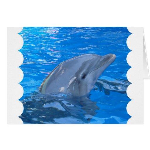 Tarjeta de felicitación del delfín de Bottlenose
