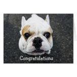 Tarjeta de felicitación del dogo de la enhorabuena