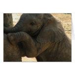 Tarjeta de felicitación del elefante del bebé