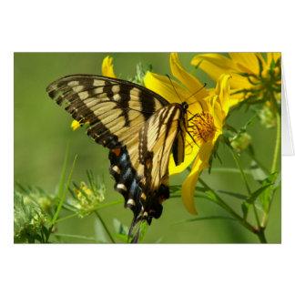 Tarjeta de felicitación del este de Swallowtail