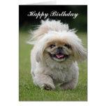 Tarjeta de felicitación del feliz cumpleaños del p