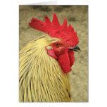 Tarjeta de felicitación del gallo