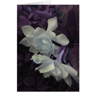 Tarjeta de felicitación del Gardenia