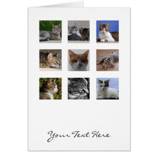 Tarjeta de felicitación del gato