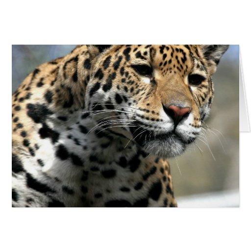 Tarjeta de felicitación del gato de leopardo