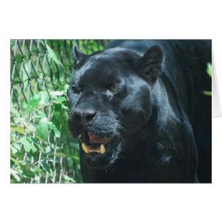 Tarjeta de felicitación del gato de pantera negra