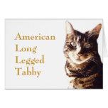 Tarjeta de felicitación del gato de Tabby